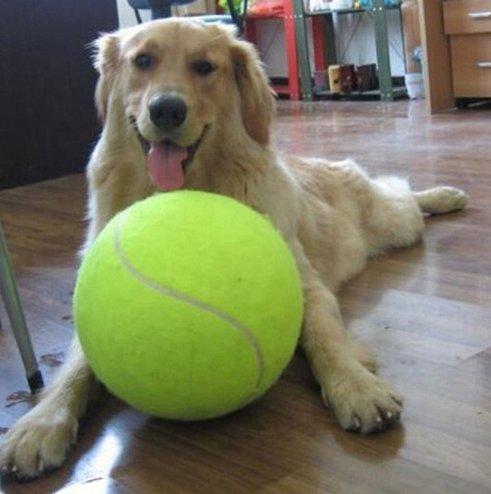 Duża piłka tenisowa