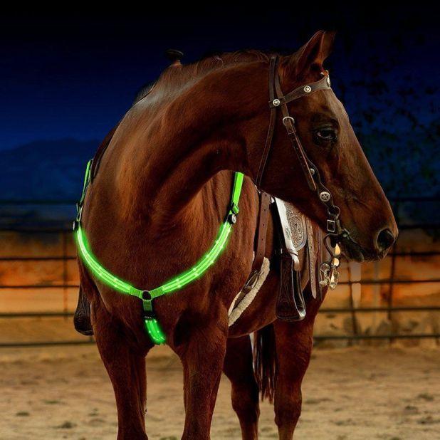 Napierśnik LED dla konia aliexpress