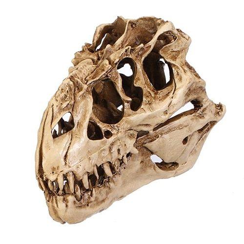 rzeźba czaszka dinozaura aliexpress