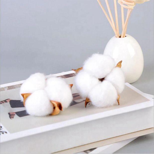 aliexpress suszona bawełna