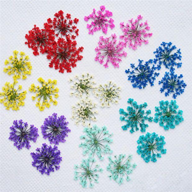 aliexpress suszone kwiatki