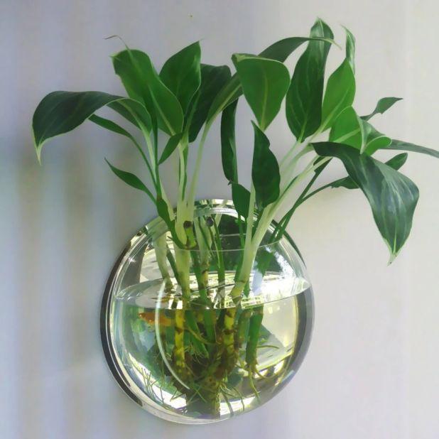 aliexpress wazon do zawieszenia na ścianie