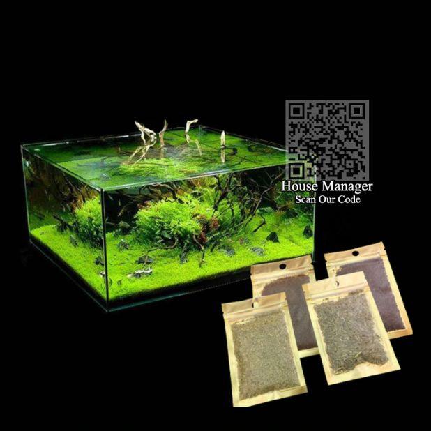 aliexpress nasiona roślin wodnych