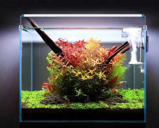 aliexpress oświetlenie do akwarium
