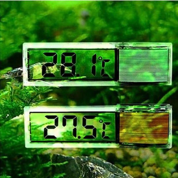 aliexpress termometr akwariowy