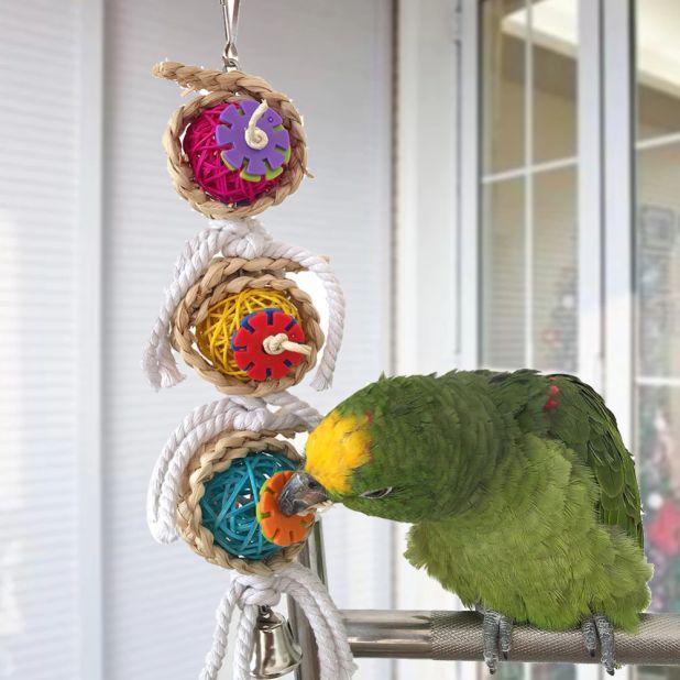aliexpress wiszące zabawki dla ptaków